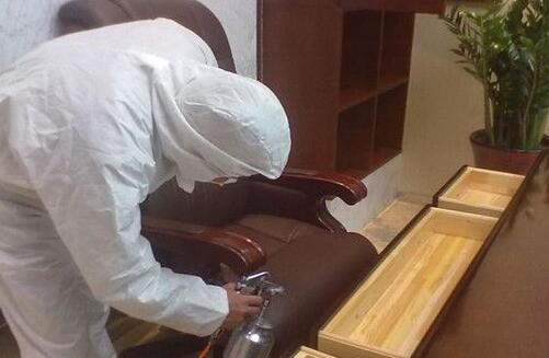 新做的家具放什么除甲醛效果好
